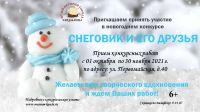 snegiegodr21
